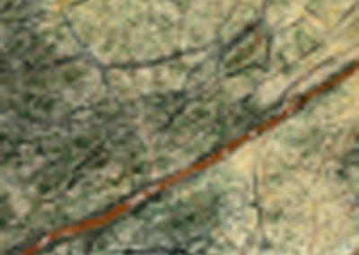 Fornitori-Forest